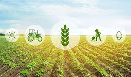 Комплекс аграрных реформ. Достижения и инвестиционные планы