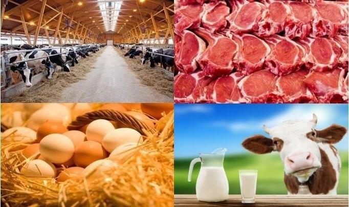 Животноводческим, птицеводческим и рыбоводческим хозяйствам будут выделены субсидии