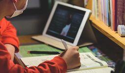 Две трети школьников в мире не имеют доступа к интернету — доклад ЮНИСЕФ