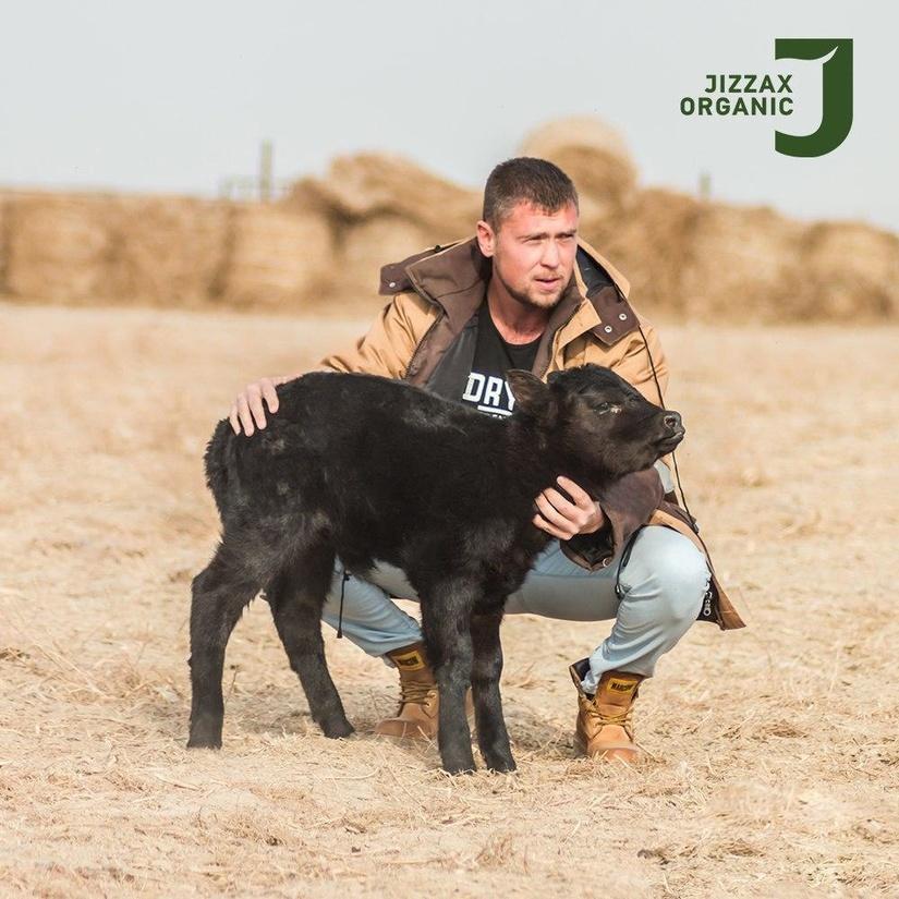 Jizzax Organic создал 250 рабочих мест в Джизакской области