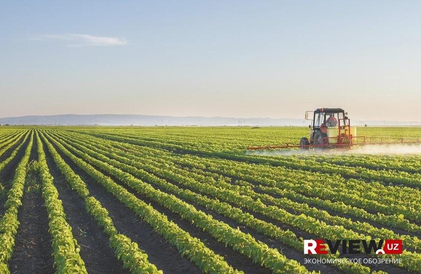 Крупные сельскохозяйственные организации объединили в одной структуре