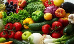 Uzbekistan greenhouse cucumber export increased by 76%