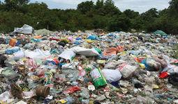 Singapur kompaniyasi O'zbekistonda chiqindidan o'g'it ishlab chiqarmoqchi
