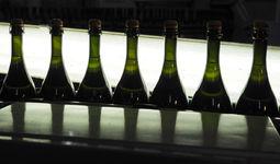 В Узбекистане выдана первая лицензия на оптовую торговлю алкоголем