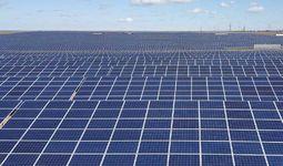 Phanes Group построит фотоэлектрическую станцию в Навоийской области