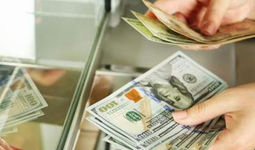 Пандемия бўлишига қарамай хориждан Ўзбекистонга 485 миллион доллар юборилган
