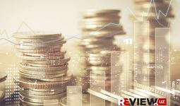 Мониторинг государственных инвестиций